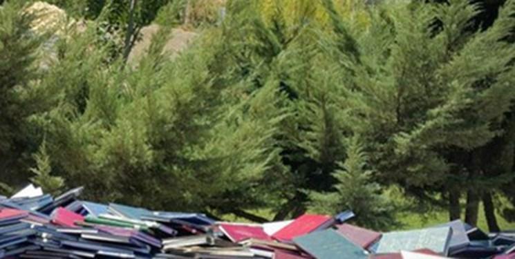 دانشجویان چگونه مانع قطع 5 هزار درخت صنوبر 10 ساله شدند؟