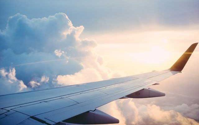 چه طور می توانیم حیوان خانگی مان را با هواپیما با خود ببریم؟